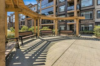 "Photo 31: 309 12655 190A Street in Pitt Meadows: Mid Meadows Condo for sale in ""CEDAR DOWNS"" : MLS®# R2567414"