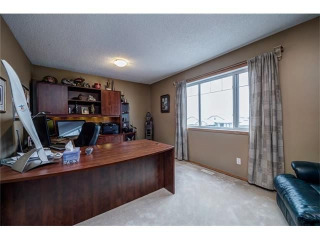 Photo 36: Photos: 137 COVE Court: Chestermere House for sale : MLS®# C4090938