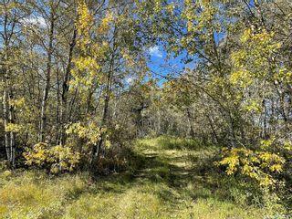 Photo 3: 23 Acres South of Goodsoil in Beaver River: Lot/Land for sale (Beaver River Rm No. 622)  : MLS®# SK871123