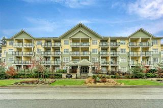Photo 1: 411 5020 221A STREET in Langley: Murrayville Condo for sale : MLS®# R2524259