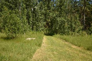 Photo 8: 18 Village West: Rural Wetaskiwin County Rural Land/Vacant Lot for sale : MLS®# E4251065