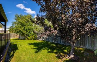 Photo 41: 6 Camirant Crescent in Winnipeg: Island Lakes Residential for sale (2J)  : MLS®# 202122628