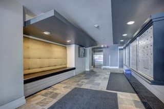 Photo 14: 201 315 24 Avenue SW in Calgary: Mission Apartment for sale : MLS®# A1062504