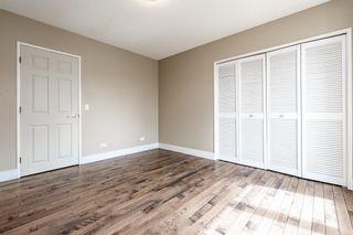 Photo 19: 12908 66 Avenue in Edmonton: Zone 15 House for sale : MLS®# E4261008