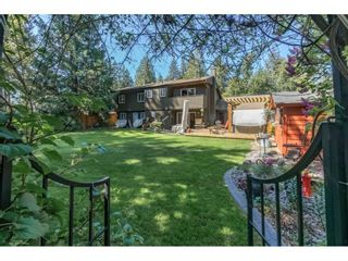 """Photo 2: 4130 206A Street in Langley: Brookswood Langley House for sale in """"Brookswood"""" : MLS®# R2275254"""