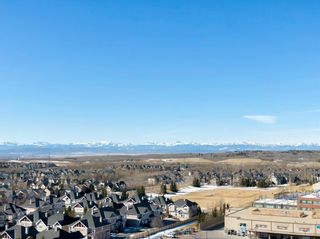 Photo 47: 8215 9 Avenue SW in Calgary: West Springs Detached for sale : MLS®# A1081882