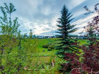 Photo 47: 132 HAMPSHIRE Grove NW in Calgary: Hamptons Detached for sale : MLS®# A1104381