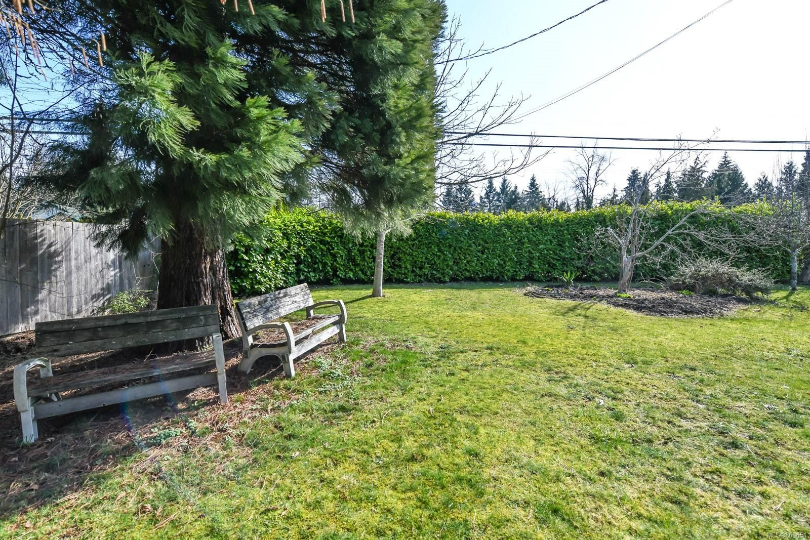 Photo 34: Photos: 4712 Cumberland Rd in : CV Cumberland House for sale (Comox Valley)  : MLS®# 869654