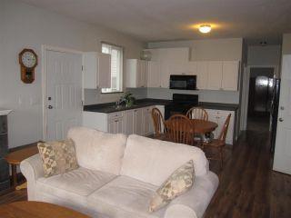 Photo 12: 20670 LORNE Avenue in Maple Ridge: Southwest Maple Ridge House for sale : MLS®# R2251576