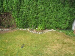 Photo 11: 2157 BROADWAY ST in ABBOTSFORD: Abbotsford West House for rent (Abbotsford)