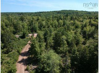 Photo 7: Lot 9-A Airforce Camp Road in Springfield: 400-Annapolis County Vacant Land for sale (Annapolis Valley)  : MLS®# 202122589