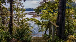 Photo 4: 863 Elina Rd in : PA Ucluelet Land for sale (Port Alberni)  : MLS®# 870302