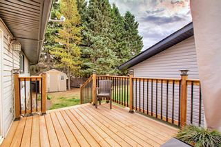 Photo 32: 1351 Idaho Street: Carstairs Detached for sale : MLS®# A1040858