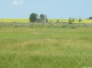 Photo 10: Eagle Creek Acreage 80 Acres in Asquith: Lot/Land for sale : MLS®# SK863384