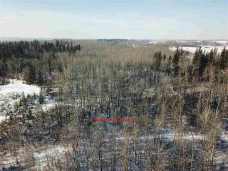 Photo 11: 50322 Rge Road 10: Rural Parkland County Rural Land/Vacant Lot for sale : MLS®# E4247117