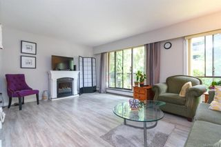 Photo 2: 211 1005 McKenzie Ave in Saanich: SE Quadra Condo for sale (Saanich East)  : MLS®# 843439