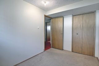 Photo 19: 212 Rundlefield Road NE in Calgary: Rundle Detached for sale : MLS®# A1138911