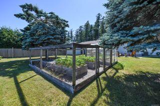 Photo 3: 456 Condor St in : CV Comox (Town of) House for sale (Comox Valley)  : MLS®# 879814