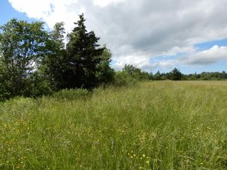 Photo 11: Lot 17 Second Division Road in Heathbell: 108-Rural Pictou County Vacant Land for sale (Northern Region)  : MLS®# 202116209