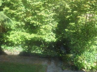 Photo 15: 201 2020 CEDAR VILLAGE Crescent: Westlynn Home for sale ()  : MLS®# V848309