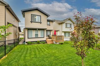 Photo 38: 240 PANORA Close NW in Calgary: Panorama Hills Detached for sale : MLS®# A1114711