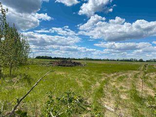 Photo 8: NE 34-49-27-W4 none: Rural Leduc County Rural Land/Vacant Lot for sale : MLS®# E4246771