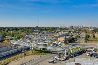 Photo 16: 1216 8710 Horton Road SW in Calgary: Haysboro Apartment for sale : MLS®# A1144532