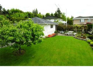 Photo 7: 350 GLYNDE Avenue in Burnaby: Capitol Hill BN House for sale (Burnaby North)  : MLS®# V892647