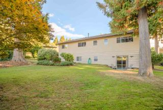 """Photo 17: 3311 DALEBRIGHT Drive in Burnaby: Government Road House for sale in """"GOVERNMENT ROAD"""" (Burnaby North)  : MLS®# R2214815"""