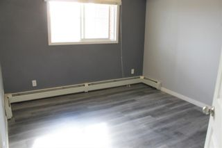 Photo 11: 2216 10 Prestwick Bay SE in Calgary: McKenzie Towne Apartment for sale : MLS®# A1101175