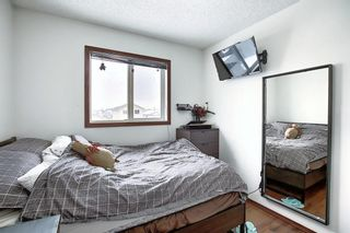 Photo 31: 47 Appleburn Close SE in Calgary: Applewood Park Detached for sale : MLS®# A1049300