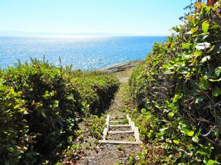 Photo 14: 2892 Fishboat Bay Rd in : Sk French Beach House for sale (Sooke)  : MLS®# 863163