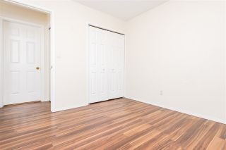 Photo 24: 3737 34A Avenue in Edmonton: Zone 29 House for sale : MLS®# E4225007
