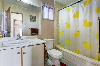 Photo 18: 20 Castleridge Close NE in Calgary: Castleridge Detached for sale : MLS®# A1113165