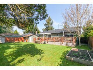 Photo 19: 5290 1ST AV in Tsawwassen: Pebble Hill House for sale : MLS®# V1118434