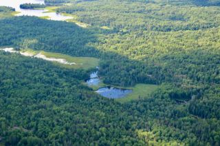 Photo 13: 16536 Rainy Lake in Fort Frances: Vacant Land for sale : MLS®# TB212374