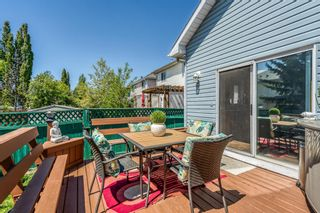 Photo 33: 686 Coventry Drive NE in Calgary: Coventry Hills Detached for sale : MLS®# A1116963
