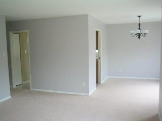 Photo 4: 20507 115A Avenue in Maple Ridge: Southwest Maple Ridge House for sale : MLS®# V1065414