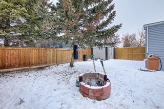 Photo 28: 128 Big Springs Drive SE: Airdrie Detached for sale : MLS®# A1065928