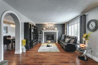 Photo 16: 47 Chapala Landing SE in Calgary: Chaparral Detached for sale : MLS®# A1124054