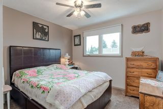 Photo 13: 123 Erin Woods Drive SE in Calgary: Erin Woods Detached for sale : MLS®# A1117498