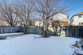 Photo 46: 74 Coventry Crescent NE in Calgary: Coventry Hills Detached for sale : MLS®# A1078421