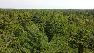 Photo 7: Lot Highway 203 in Shelburne: 407-Shelburne County Vacant Land for sale (South Shore)  : MLS®# 202114248