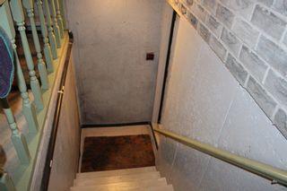 Photo 39: 53 Hamilton Avenue in Cobourg: House for sale : MLS®# 248535