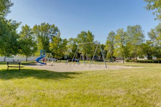Photo 37: 40 Rundlewood Bay NE in Calgary: Rundle Detached for sale : MLS®# A1141150