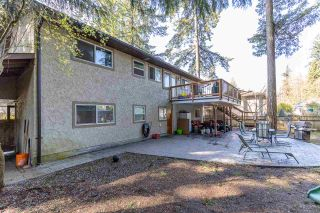 "Photo 15: 20207 43 Avenue in Langley: Brookswood Langley House for sale in ""BROOKSWOOD"" : MLS®# R2566996"