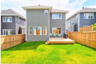 Photo 31: 6515 ELSTON Loop in Edmonton: Zone 57 House for sale : MLS®# E4249653