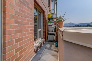 Photo 36: : House for sale : MLS®# 10235713
