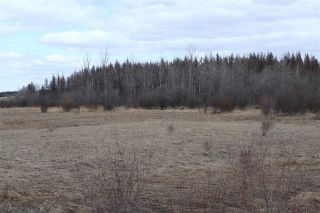 Photo 26: Twp 510 RR 33: Rural Leduc County Rural Land/Vacant Lot for sale : MLS®# E4239253