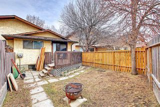 Photo 39: 1137 Berkley Drive NW in Calgary: Beddington Heights Semi Detached for sale : MLS®# A1136717
